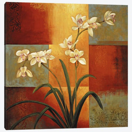 White Orchid Canvas Print #JDE20} by Jill Deveraux Canvas Wall Art