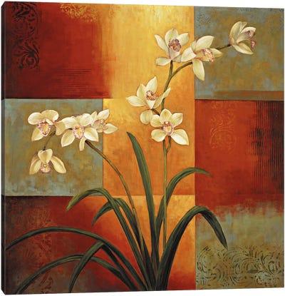White Orchid Canvas Print #JDE20