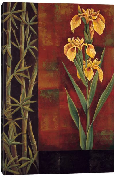 Yellow Iris Canvas Print #JDE21