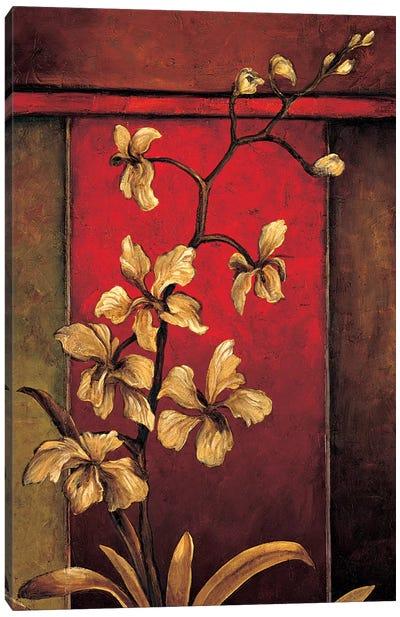 A Light Within II Canvas Art Print