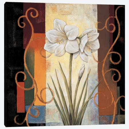 Amaryllis Canvas Print #JDE3} by Jill Deveraux Canvas Wall Art