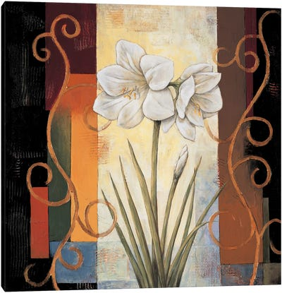 Amaryllis Canvas Art Print