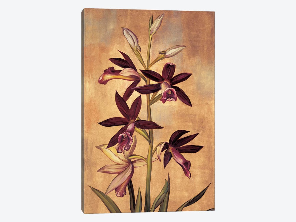 Burgundy Orchid by Jill Deveraux 1-piece Canvas Art
