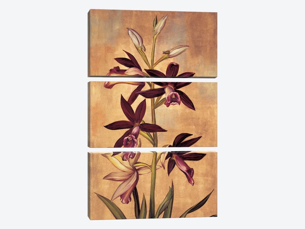 Burgundy Orchid by Jill Deveraux 3-piece Canvas Art