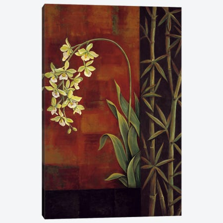 Green Orchid Canvas Print #JDE7} by Jill Deveraux Canvas Art Print