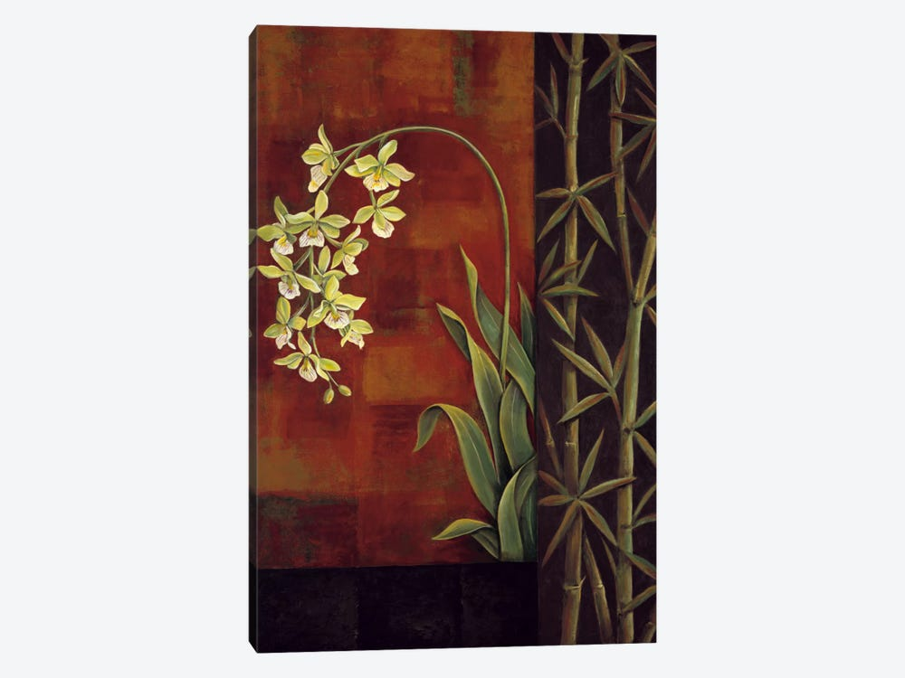 Green Orchid by Jill Deveraux 1-piece Canvas Print