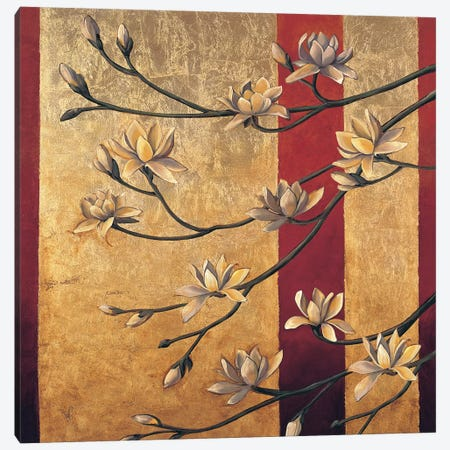 Magnolia Screen Canvas Print #JDE9} by Jill Deveraux Canvas Art