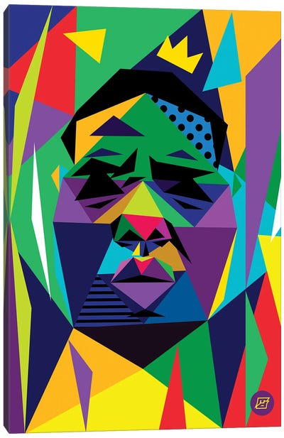 Big Face Canvas Art Print