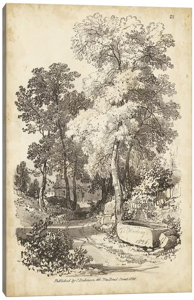 Noble Tree I Canvas Art Print