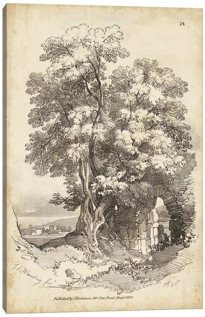 Noble Tree II Canvas Art Print