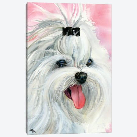 Lovely Lexi - Maltese 3-Piece Canvas #JDI100} by Judith Stein Canvas Wall Art