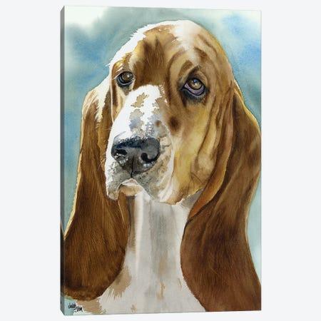Low Profile - Basset Hound Canvas Print #JDI101} by Judith Stein Canvas Art