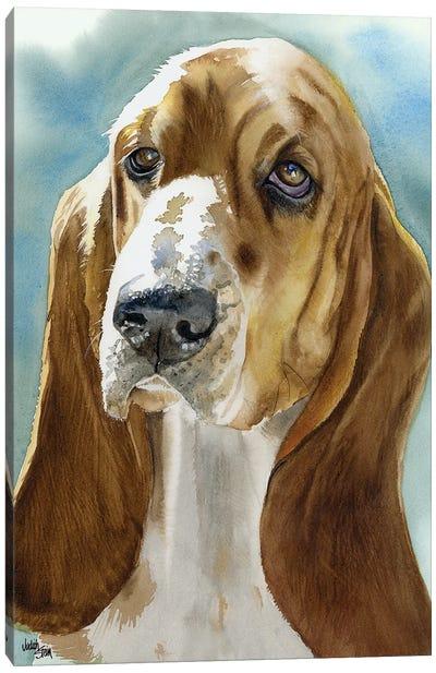 Low Profile - Basset Hound Canvas Art Print