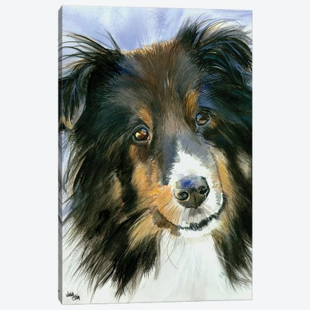 Lucy in the Sky - Shetland Sheepdog Canvas Print #JDI102} by Judith Stein Canvas Art
