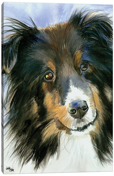 Lucy in the Sky - Shetland Sheepdog Canvas Art Print