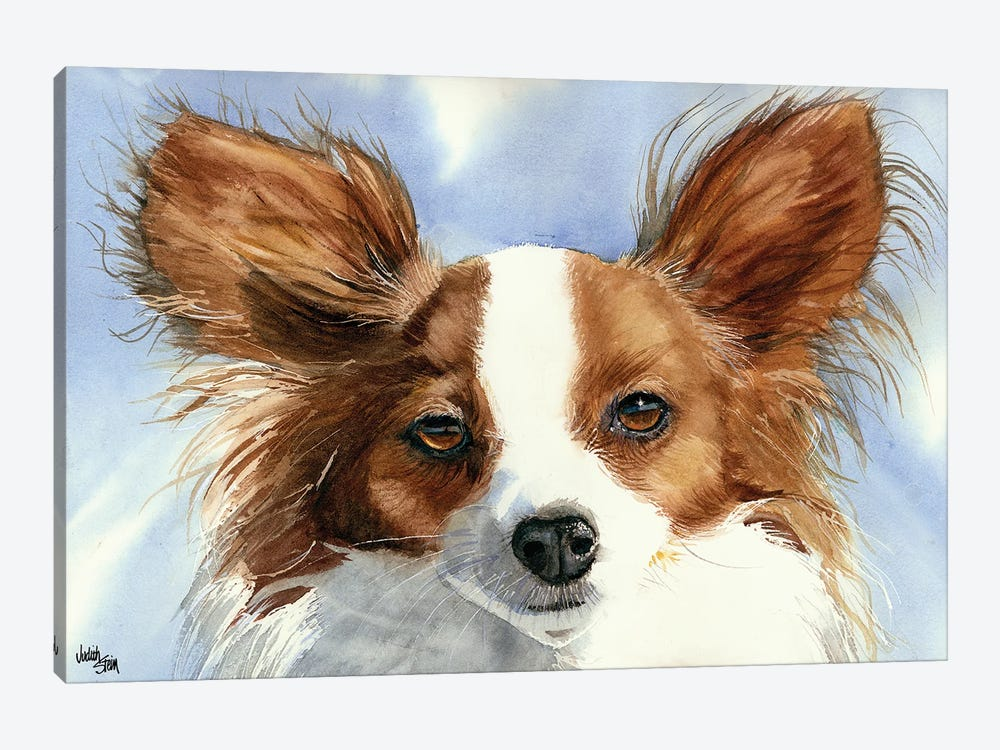 Madame Butterfly - Papillon Dog by Judith Stein 1-piece Canvas Art