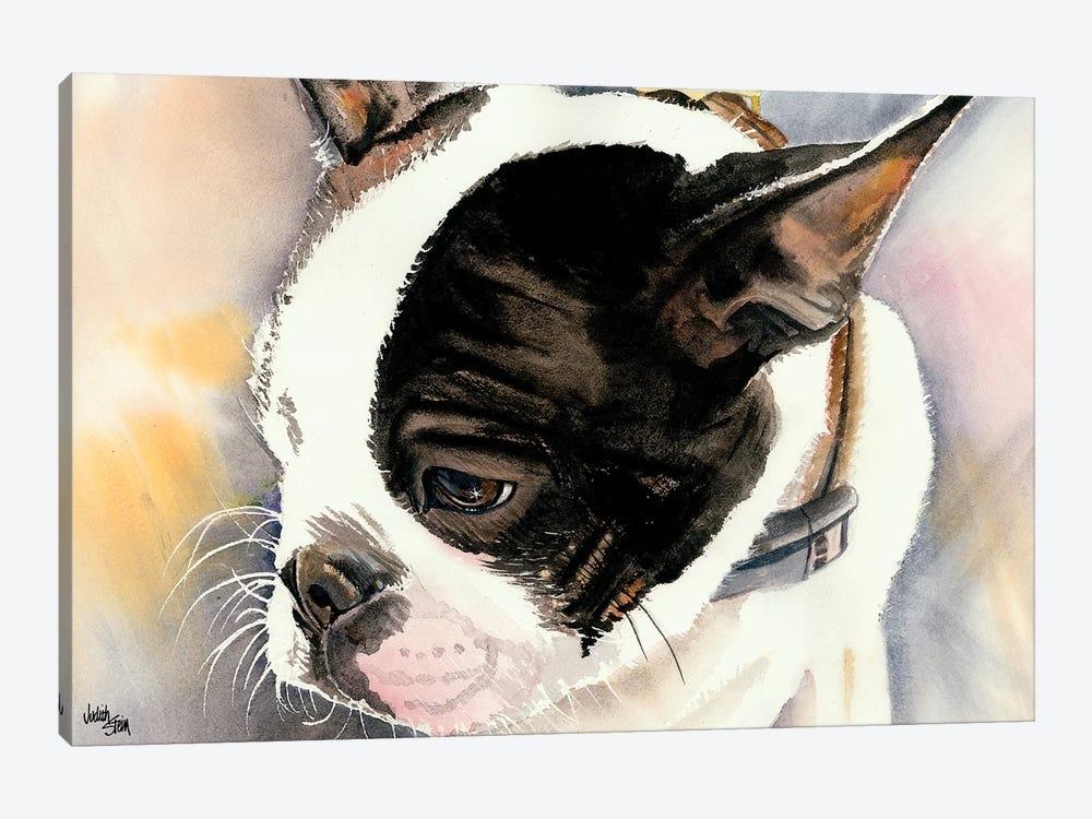 Made in American - Boston Terrier Puppy by Judith Stein 1-piece Art Print