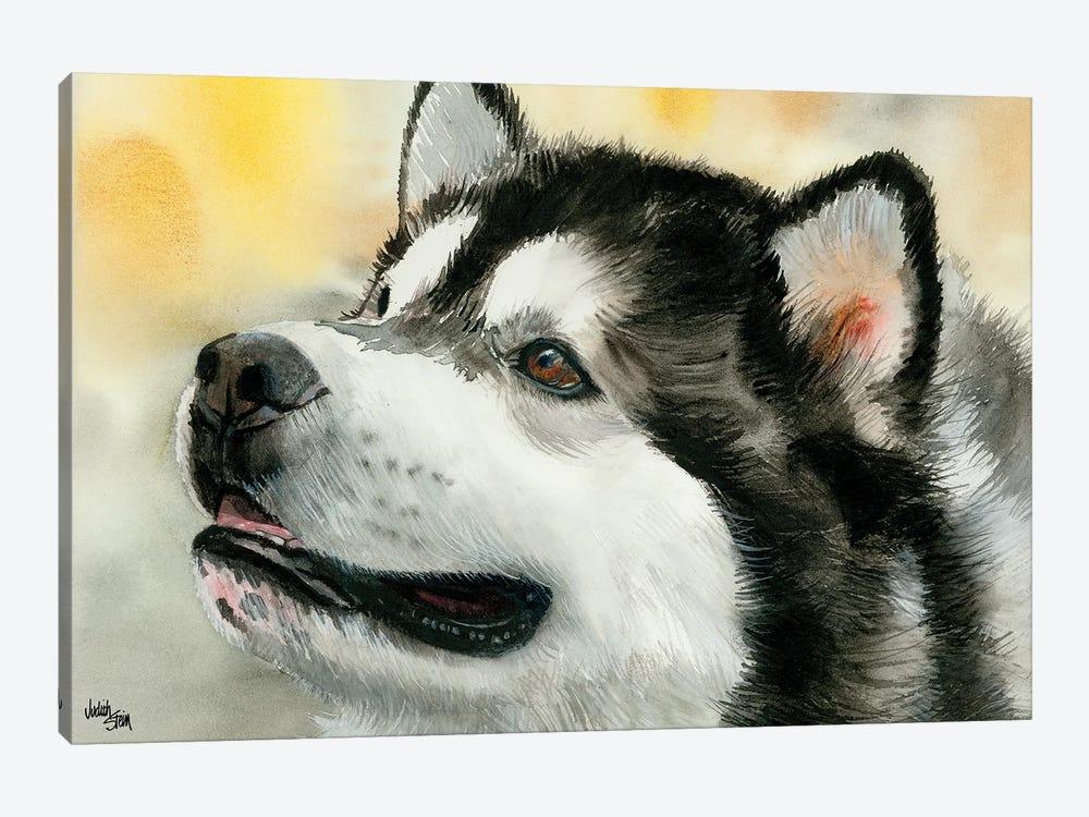 Mal - Alaskan Malamute by Judith Stein 1-piece Canvas Print