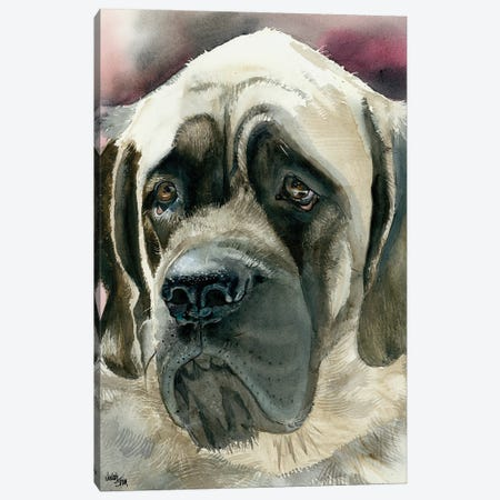 Masty - English Mastiff Canvas Print #JDI108} by Judith Stein Canvas Artwork