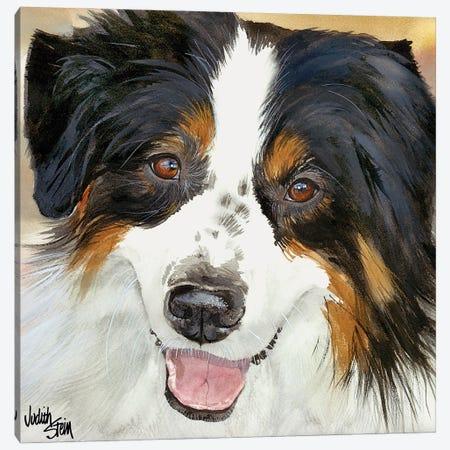 Awesome Aussie Canvas Print #JDI10} by Judith Stein Art Print