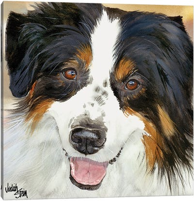 Awesome Aussie Canvas Art Print