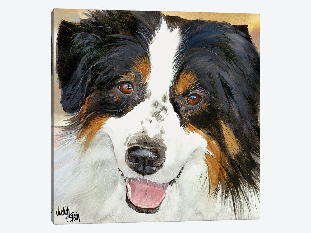 Awesome Aussie by Judith Stein 1-piece Canvas Art