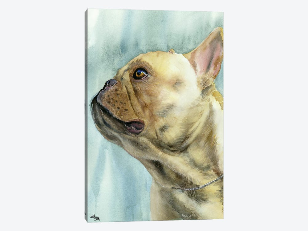 No Biggie - French Bulldog by Judith Stein 1-piece Canvas Art Print