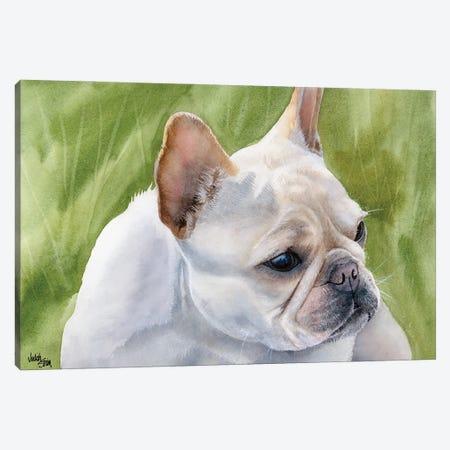 Pants - French Bulldog Fawn Canvas Print #JDI115} by Judith Stein Canvas Artwork