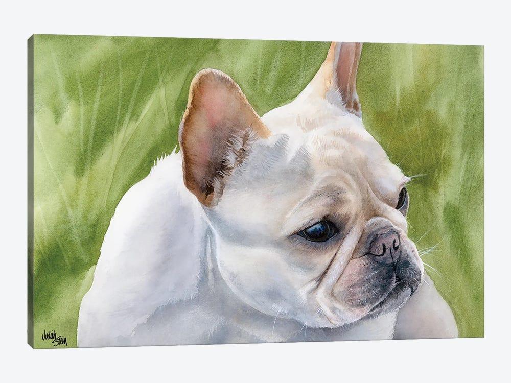 Pants - French Bulldog Fawn by Judith Stein 1-piece Art Print