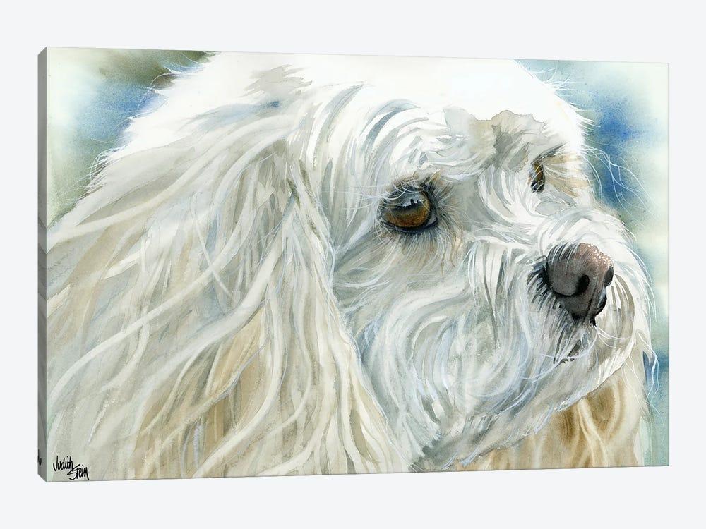 Perfect Pet - Cavachon Dog by Judith Stein 1-piece Art Print
