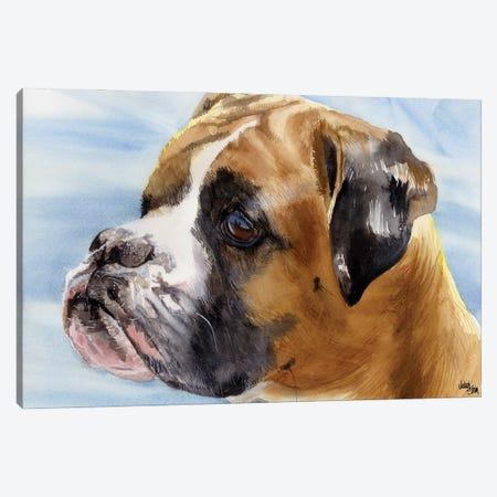 Peter Pan - Boxer Dog Canvas Print #JDI118} by Judith Stein Canvas Print