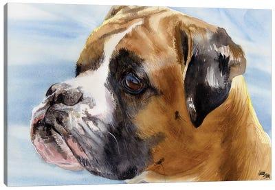 Peter Pan - Boxer Dog Canvas Art Print
