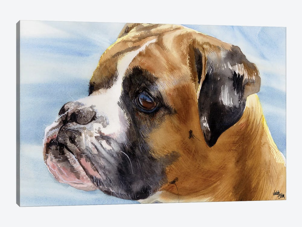 Peter Pan - Boxer Dog by Judith Stein 1-piece Canvas Wall Art