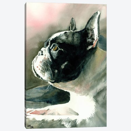 Petit Chien Vula Canvas Print #JDI119} by Judith Stein Canvas Art Print