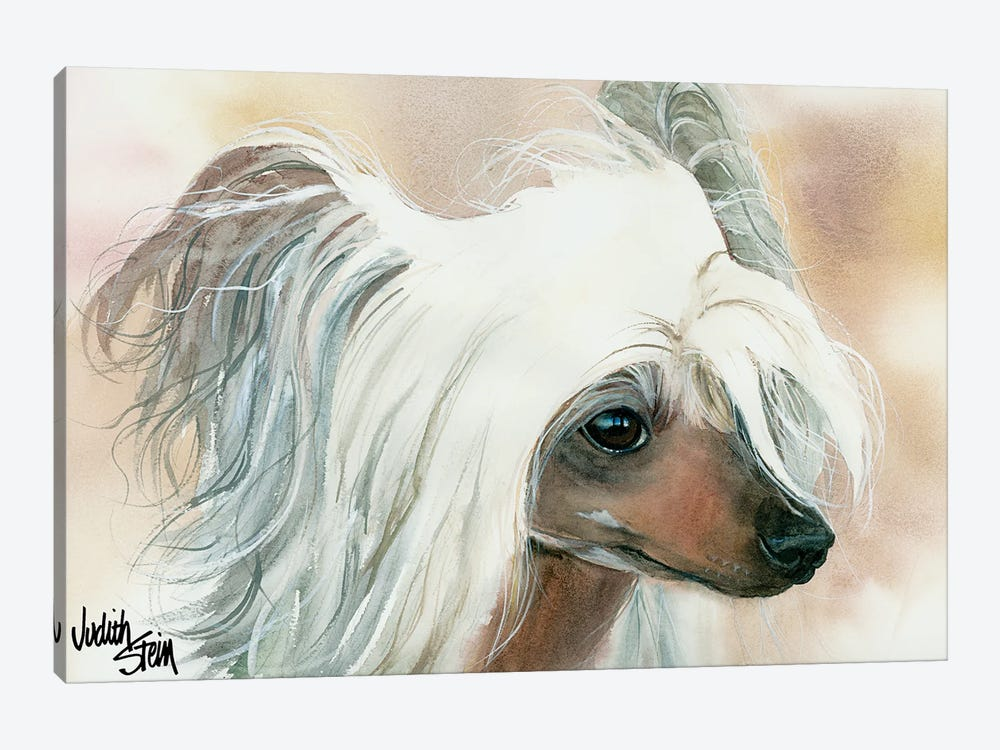 Bad Hair Day - Chinese Crested by Judith Stein 1-piece Art Print