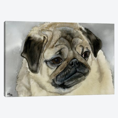 Playful Pug Canvas Print #JDI120} by Judith Stein Canvas Art