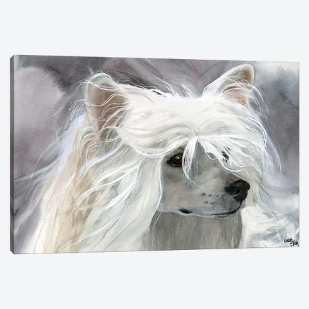 Powder Puff Girl - Powder Puff Chinese Crested Canvas Print #JDI122} by Judith Stein Canvas Art
