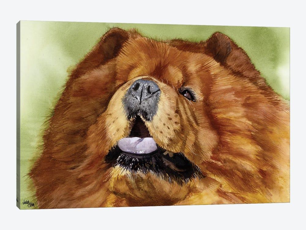 Puffy Lion Dog - Chow by Judith Stein 1-piece Canvas Artwork