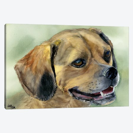 Puggle Bug - Puggle Dog Canvas Print #JDI124} by Judith Stein Art Print