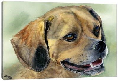 Puggle Bug - Puggle Dog Canvas Art Print