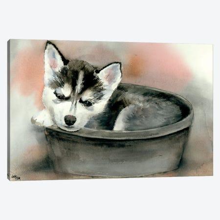 Pup in a Cup - Gemma Canvas Print #JDI125} by Judith Stein Art Print