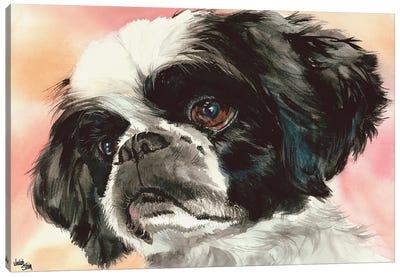 Puppy Dog Eyes - Shih Tzu Canvas Art Print