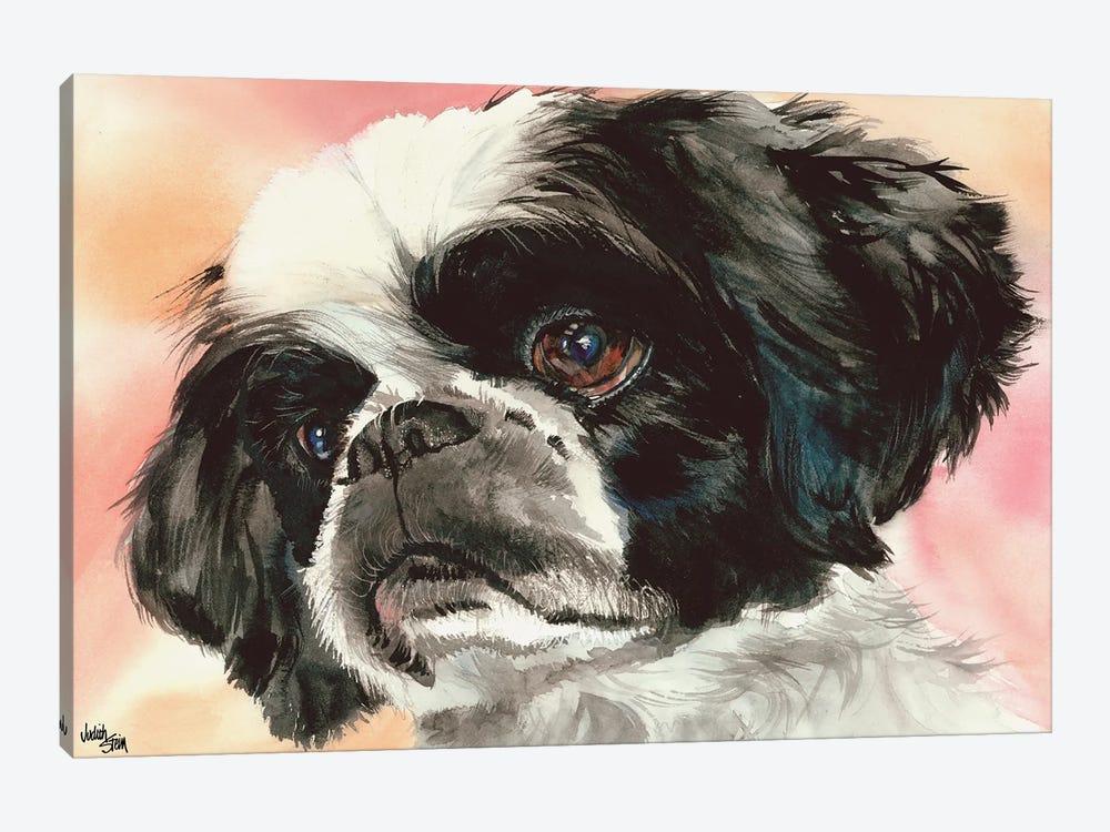 Puppy Dog Eyes - Shih Tzu by Judith Stein 1-piece Canvas Print