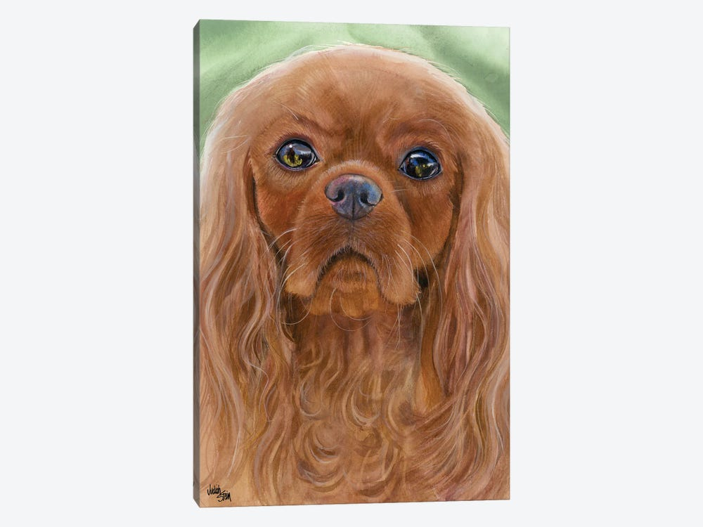 Ruby Slippers - Cavalier King Charles Spaniel by Judith Stein 1-piece Canvas Art