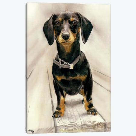 Sammy - Daschund 3-Piece Canvas #JDI133} by Judith Stein Canvas Print