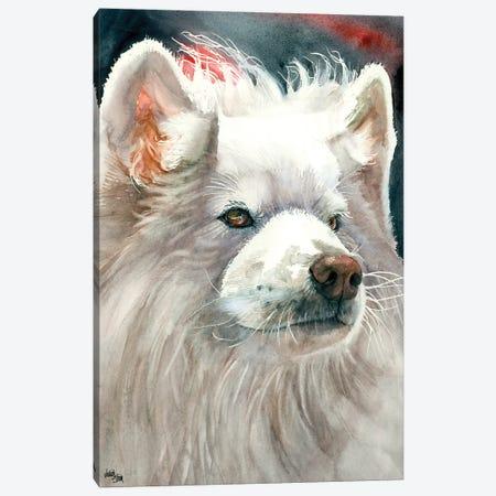 Sammy Smile - Samoyed Canvas Print #JDI134} by Judith Stein Canvas Artwork