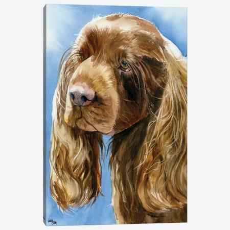 Sassy Sussex - Sussex Spaniel Canvas Print #JDI136} by Judith Stein Canvas Wall Art