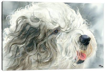Sheepish Grin - Old English Sheepdog Canvas Art Print