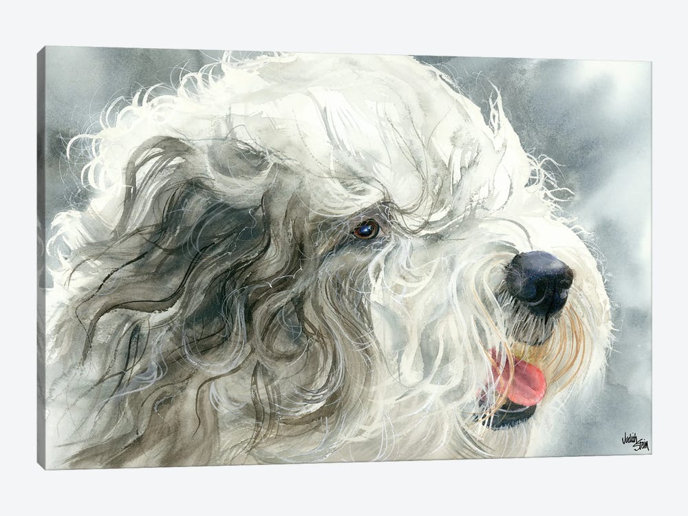 Sheepish Grin - Old English Sheepdog by Judith Stein 1-piece Canvas Art