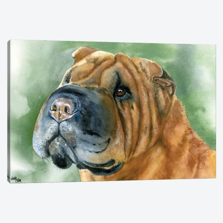 Skin Deep - Shar Pei Canvas Print #JDI140} by Judith Stein Canvas Art